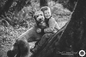 a boy and his dog on a family photo shoot