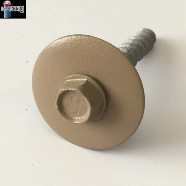 Image of BEIGE COLOR screw & washer.