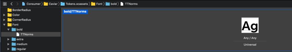 build screen showing font asset