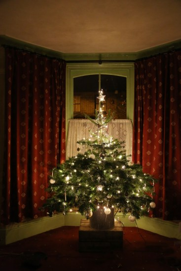 141207-ChristmasTree2014