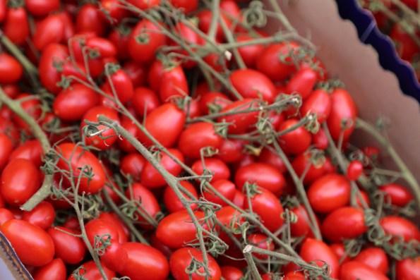 151007-Tomatoes2