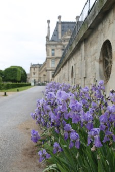 160515-Paris-Iris