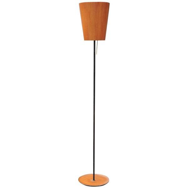 Scandinavian Modern Teak and Iron Floor Lamp
