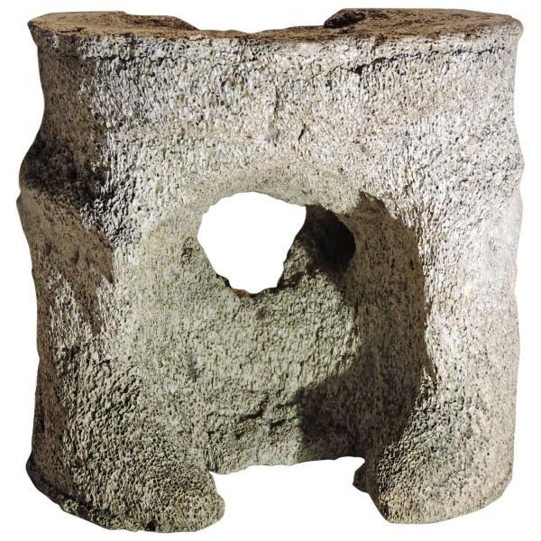Antique Whale Vertebrae Fossil