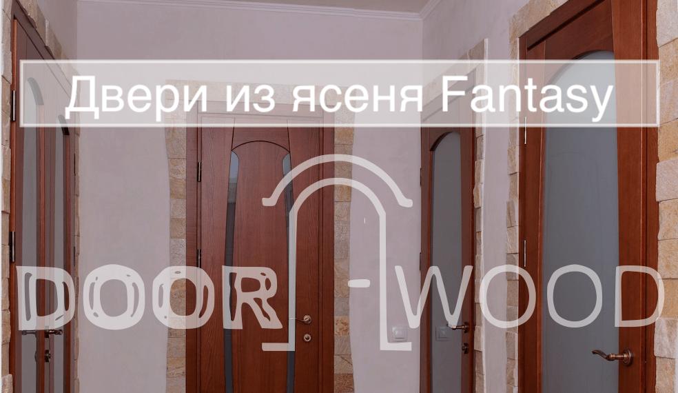 Двери межкомнатные Fantasy Объект - Квартира в Харькове DoorWooD 2