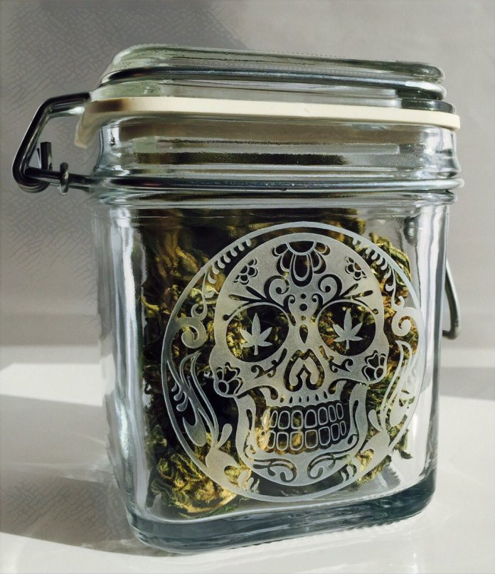 Dope Jars Review: Large Glass Jars for Better Herb Storage
