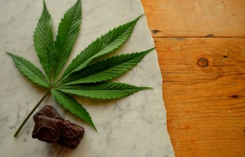 Fire Friday: LA Chocolate: Sweetly Medicated