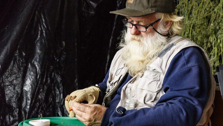 Farmer Tom: Revolutionizing Cannabis, One Fed A Time 3