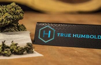 Review: True Humboldt 3