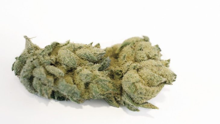 Review: Golden Goat By Deep Roots Harvest 3