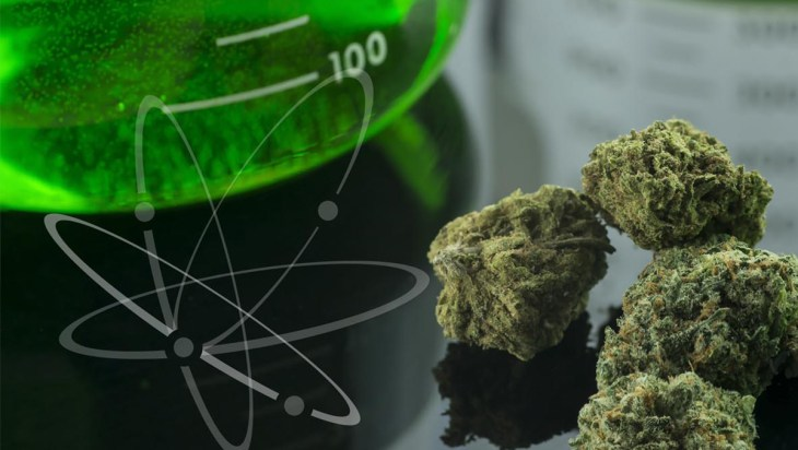 Medical Monday: Cannabis Science Conference Comes to Portland