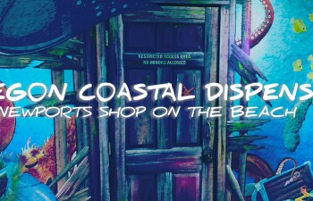 Oregon Coastal Dispensary: Newports Shop On The Beach 5