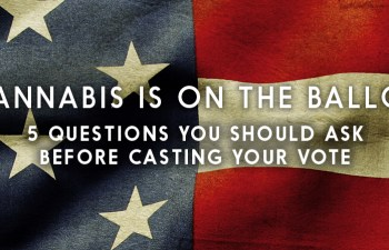 Cannabis Is On The Ballot: 5 Questions You Should Ask Before Casting Your Vote 3