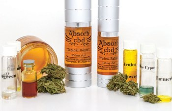 FARM TO BODY TOPICAL RELIEF: Absorb CBD for Active Bodies