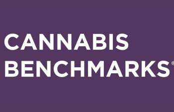 Press Release: Cannabis Benchmarks