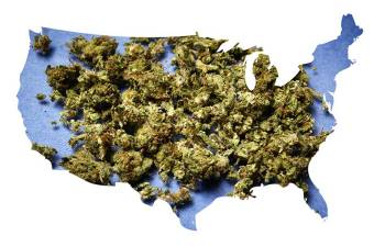 YOU VOTED TO LEGALIZE MARIJUANA: Now What?