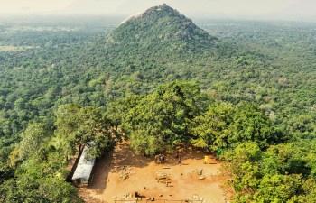Sri Lankan Cannabis India Legal Weed