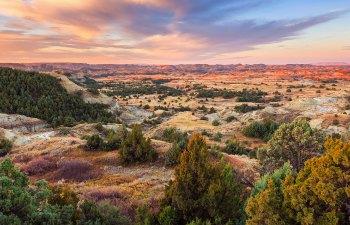North Dakota to Vote on Recreational Cannabis in November