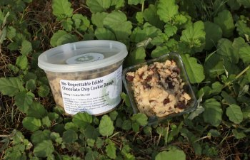 Infused Cookie Dough by Secret Squirrel Snacks