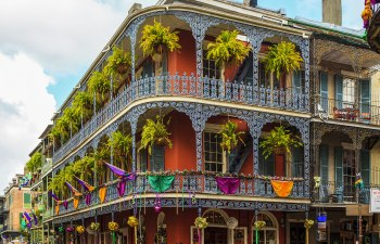 CBD in the Big Easy: Cannabis in New Orleans
