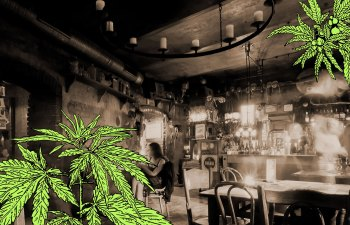 From Speakeasies to Smoke-Easies