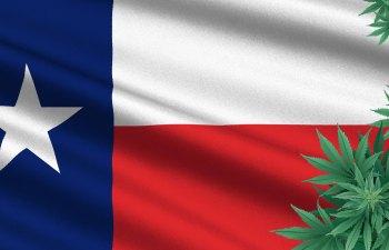 Texas Veterans for Medical Marijuana TXVMMJ