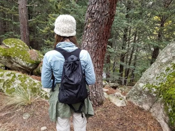 REI Co-op Flash 18 Daypack