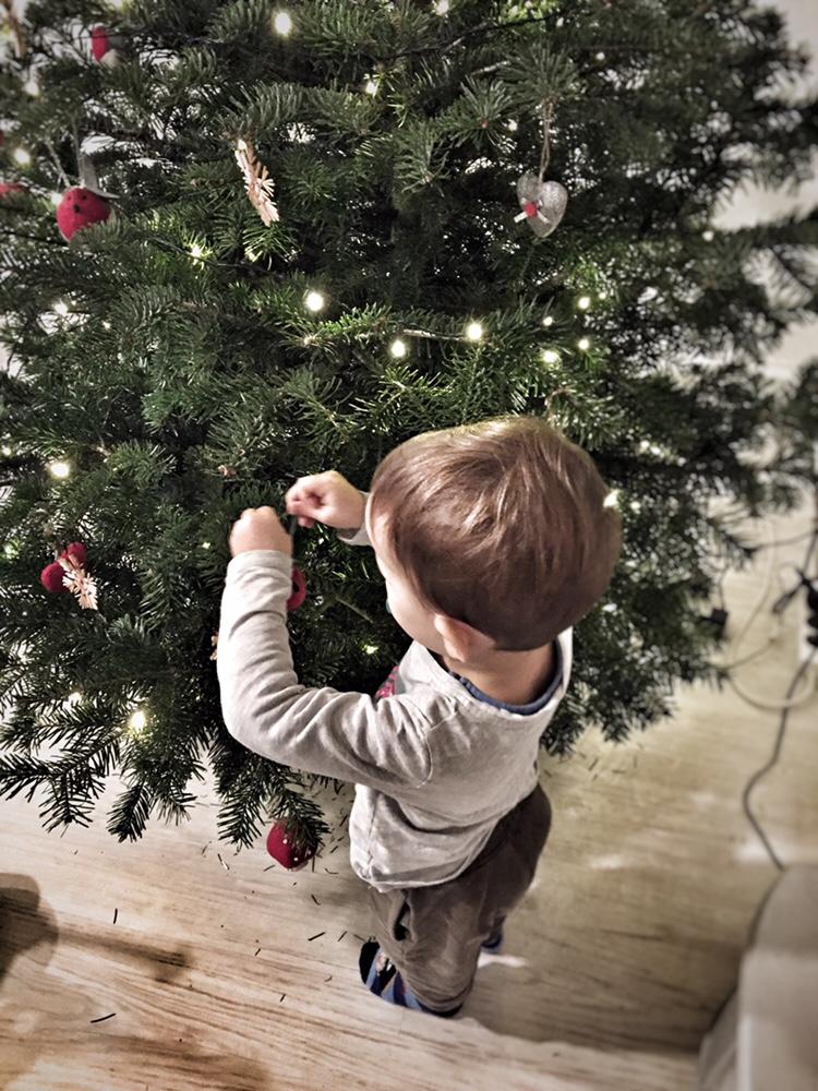 Tannenbaum Draußen Schmücken.Oh Tannenbaum Ein Weihnachtsmärchen Mit Kleinkindern Doppelkinder