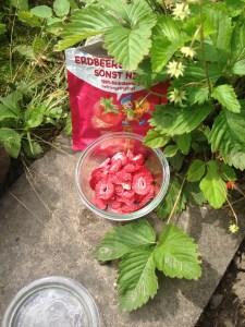 Gefriergetrocknete Bio-Erdbeeren
