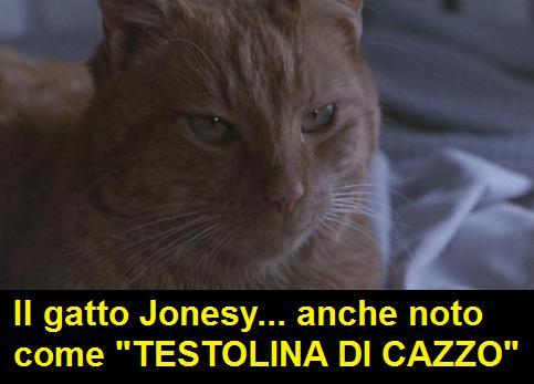 il gatto Jonesy