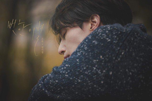 O projeto pós Goblin de Lee Dong Wook é um MV