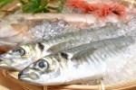 魚の鱗は食べられる?主成分は?鱗を取る理由は一体何なの?