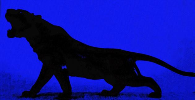 Bronze blue tiger copy
