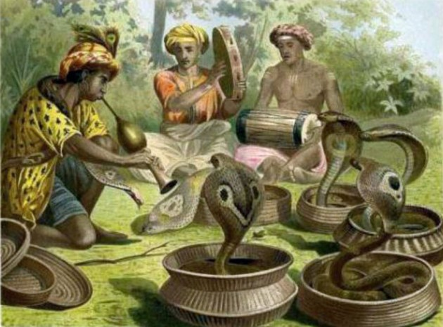 snake charmers5-5-2013 2-54-35 PM