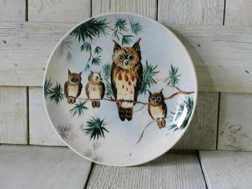 Drenner Owl plate