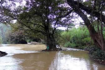 Flussabwärts...