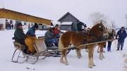 Pferderennen beim Paulmirtl