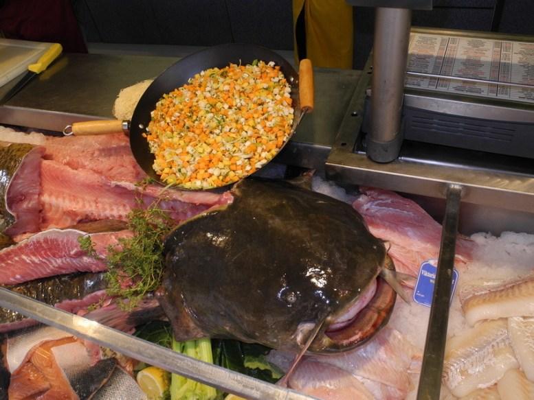 Der Wallerkopf. Der Fisch war 2,10 m lang und 63 kg schwer. Sein Alter war vermutzlich 30-40 Jahre.