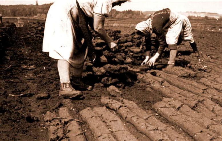 Tortabbau im Weidmoos