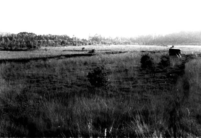 01 Bürmooser Moor