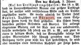 1900 01 03 Kopelent Jagndunfall Neue Warte W