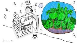 2019 regenwald