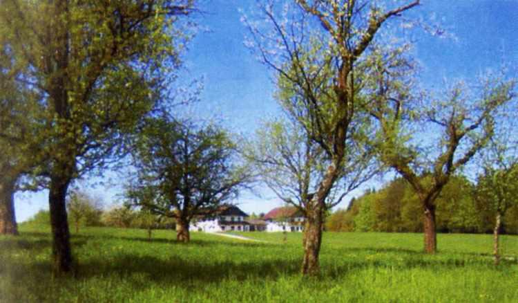 Almbauer mit Obstbäumen