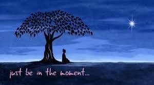mindfulness facilitadores emocionales