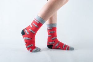 Kids Rhino bamboo socks - red and grey