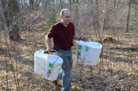 Gathering Buckets (14)