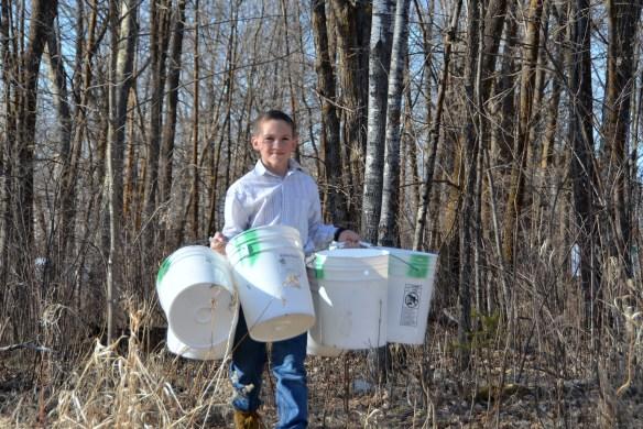 Gathering Buckets (3)