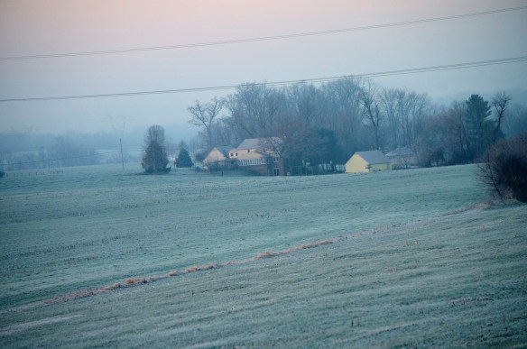 Very Heavy Frost (3)