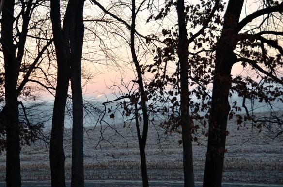 Very Heavy Frost (4)