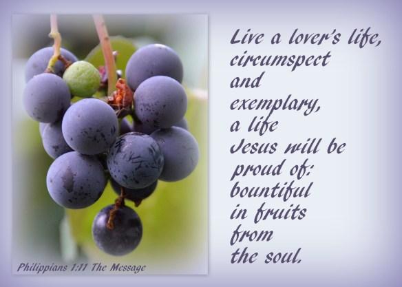 Philippians 1-11